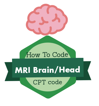 Cpt study guide coding