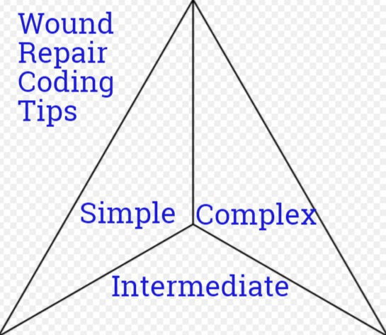showing 1st image of Cpt Code 20606 Amazing Coding guide for Wound/Laceration Repair CPT Codes